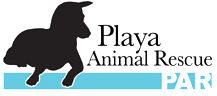 Playa Animal Rescue